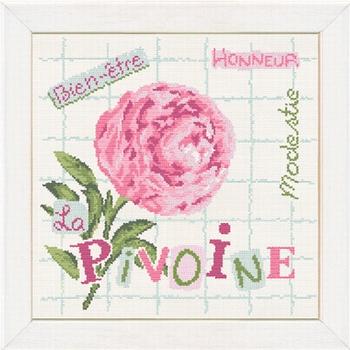 J013 La Pivoine