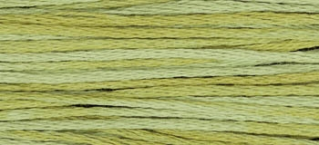 Week Dye Works Scuppernong 2196