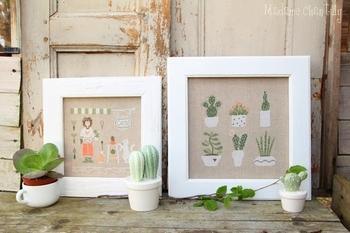 Mme Chantilly Cactus Mania