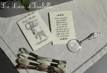 Chat-Loupe,Le Lin d'Isabelle
