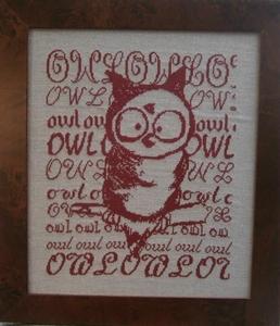 Owl sur une branche R67