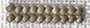 Perles Vieil Argent 5809
