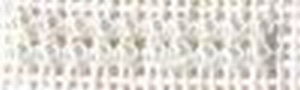 Perles Petite Blanche 6101