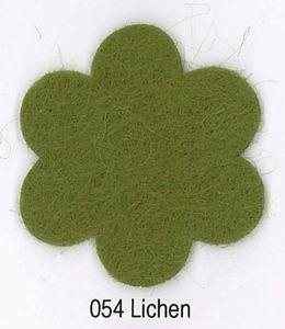 Feutrine Lichen CP054