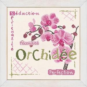 J002 L'Orchidée