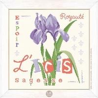 J017 Les iris