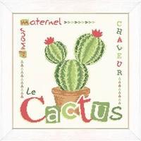 J016 Le Cactus