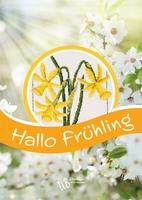 UB Hallo Frühling